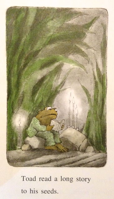 frog-and-toad-by-arnold-lobel-4